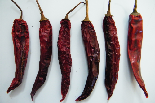 Dried red chilli with stalk SALE!