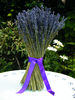 Dried lavender bunch - large sheaf x10 (2 weeks)