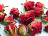 Bright red rose buds