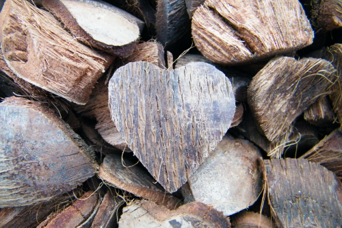 Coconut shell heart
