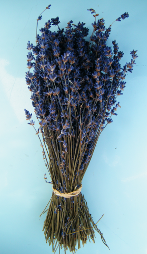Dried English lavender bunch SALE!