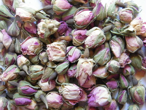 Pale pink rose buds SECONDS