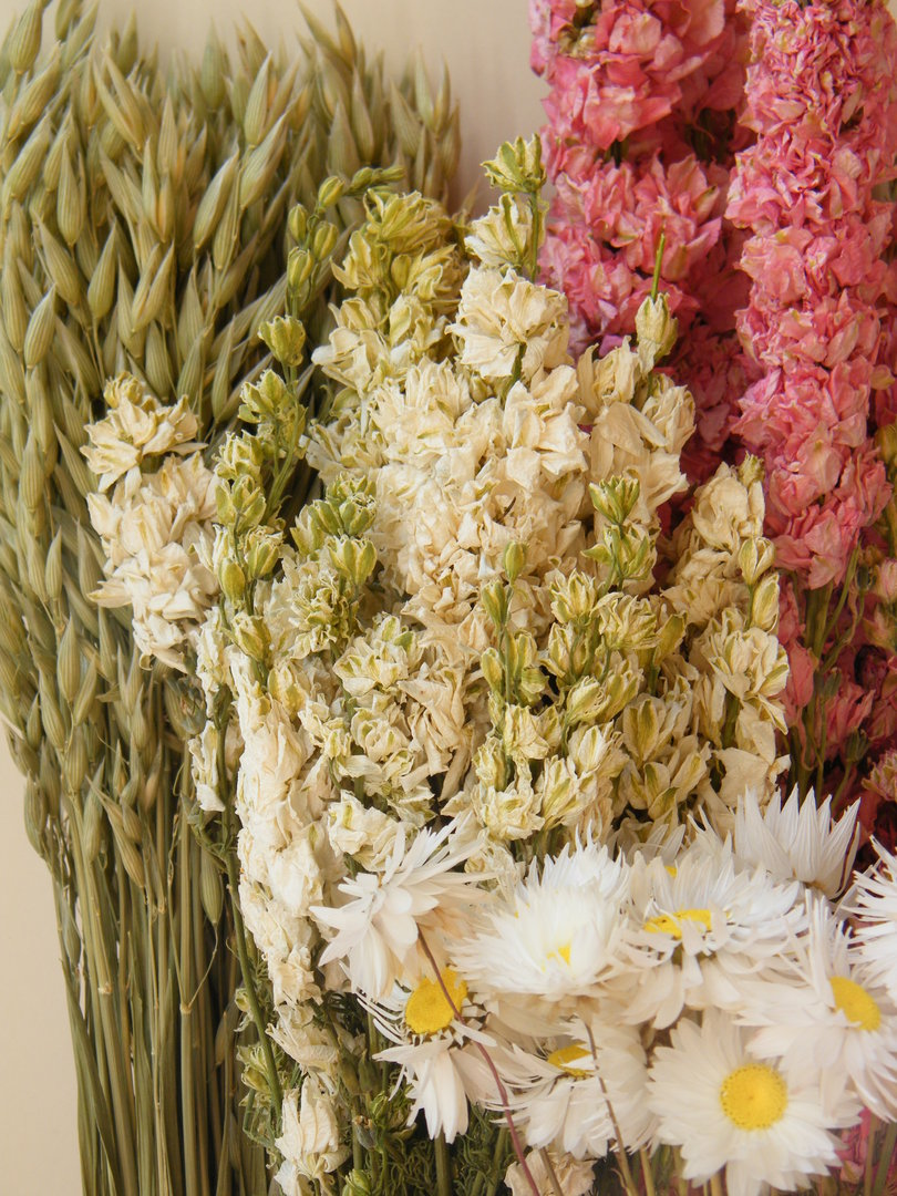 Dried flower bouquet kit - Dried flowers - Daisyshop