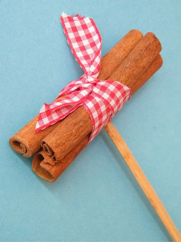Gingham cinnamon stick pick