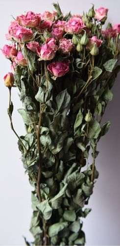 Pink roses dried flower bunch