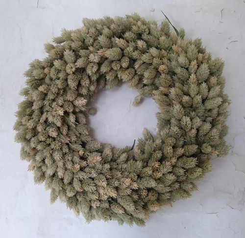 Phalaris wreath