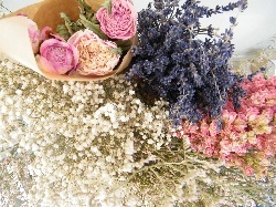 buy dried flower bunches link