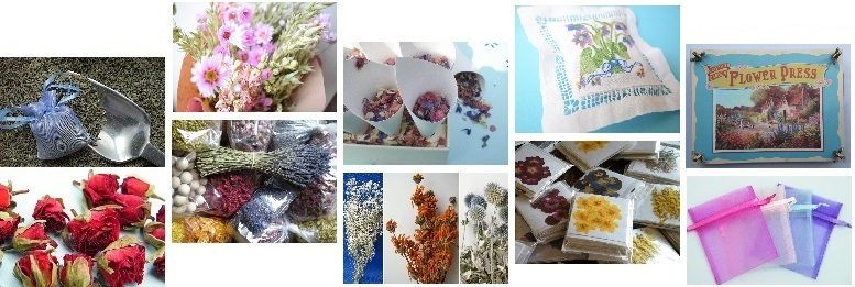 dried_flowers_montage_3