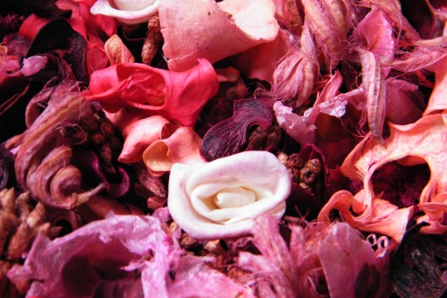 buy home fragrance | potpourri