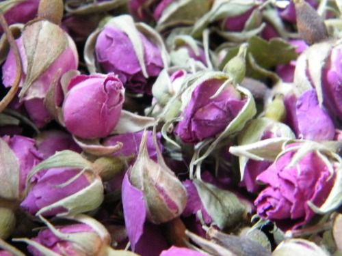 Pink rose buds dry
