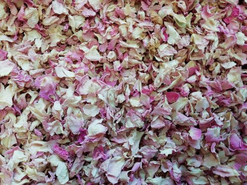 Pale pink rose petals bulk pack