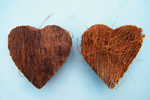 Coconut shell heart bulk packs