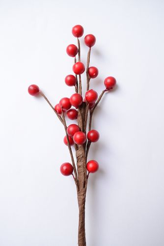 Holly berry stick - autumn winter floristry