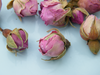 Dried rose buds baby pink, bulk packs