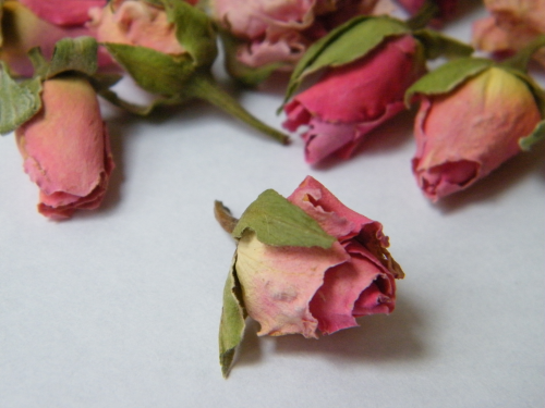 Dried rose buds mid pink