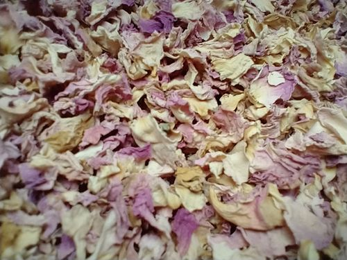 Pale pink rose petals Seconds dried