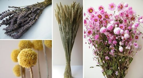Popular dried flower bunches bundle offer