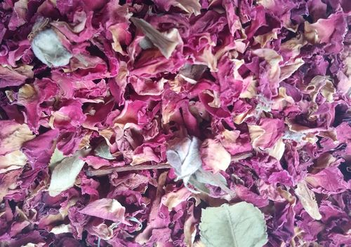 Burgundy red rose petals wholesale seconds