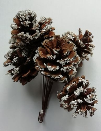 Pine cone decorations wired pack of 6