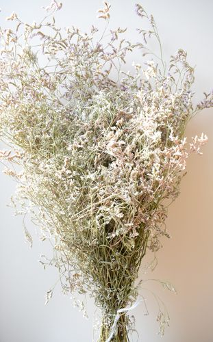 Limonium caspia dried flowers large bunch