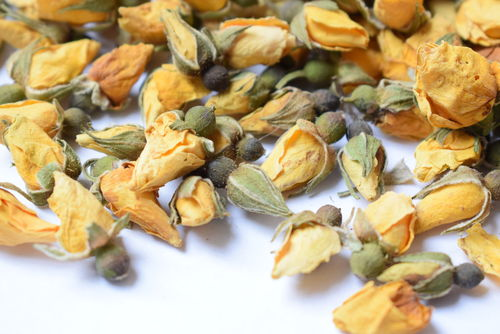 Yellow rose buds dry